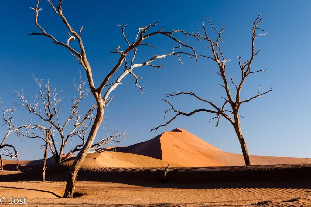 Namibia Dünenlandschaft im Sossus Vlei