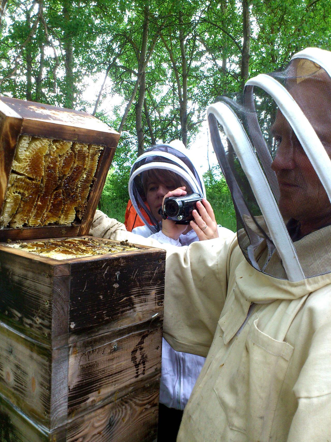 Tonda ve včelstvu