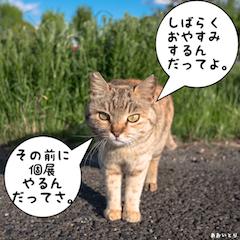 【活動休止と個展開催のお知らせ】