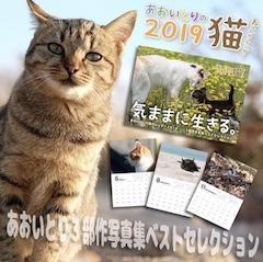 2019年猫カレンダー発売中