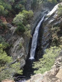 Leben bedeutet Bewegung, kommt es zum Stau, wird das Wasser faul...