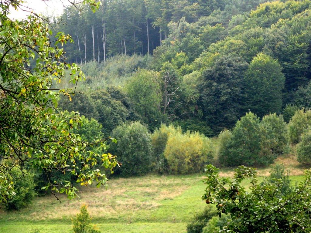 Вигляд з монастирського пагорба.