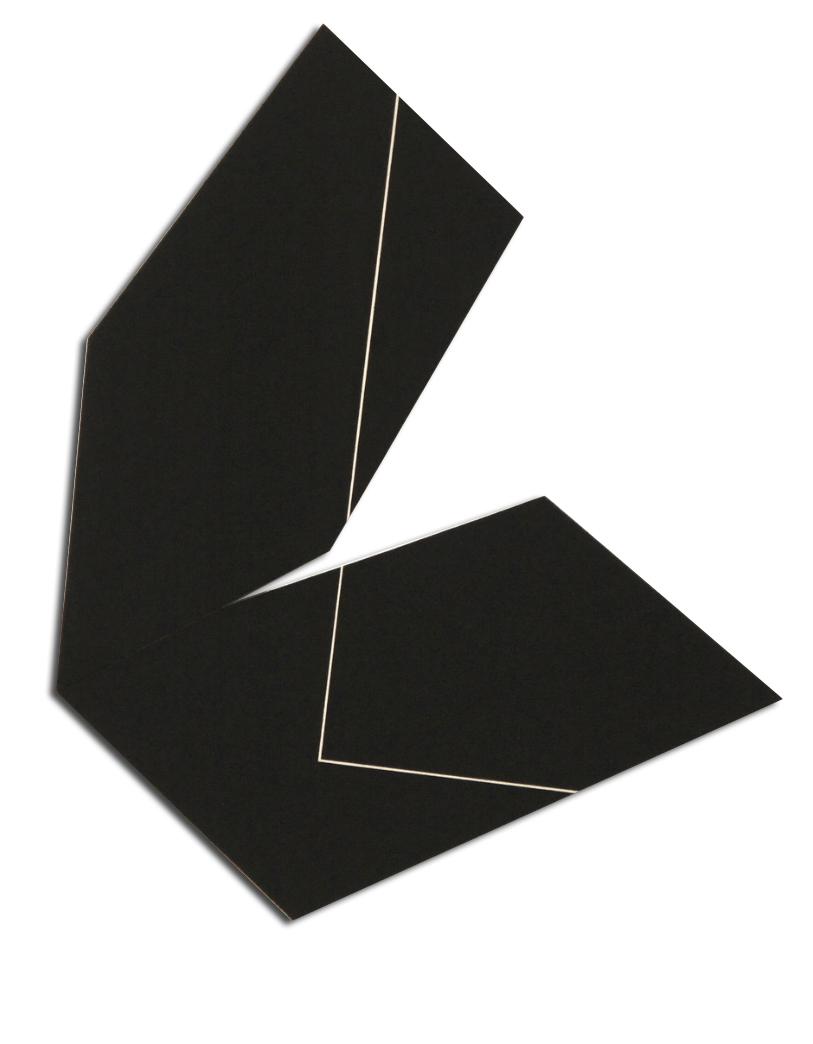 Colle de peau pigment sur toile - 80x80x4 cm