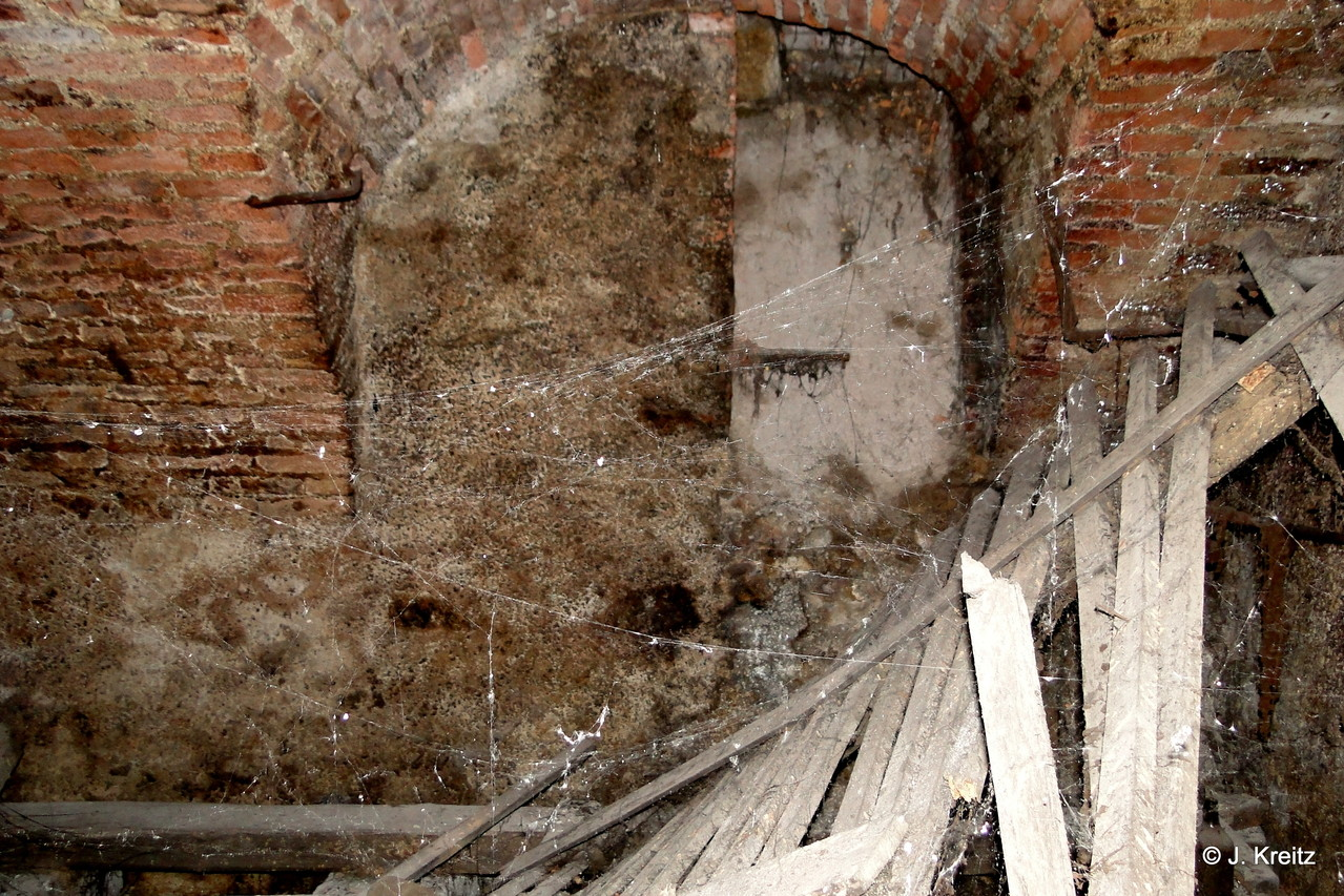 Im hinteren Teil des Gewölbes durchschreitet man riesige Spinnweben.
