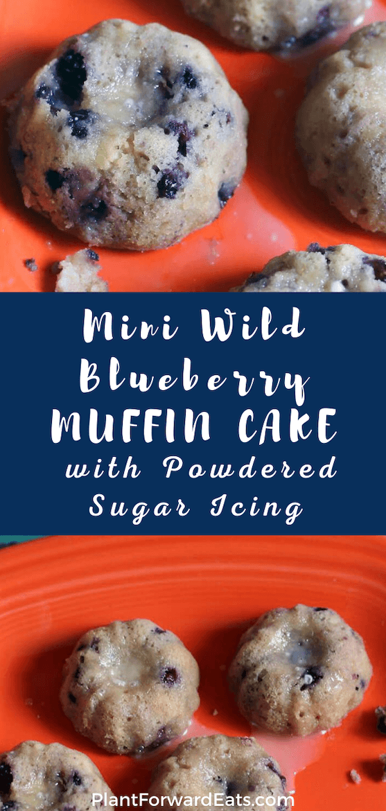 Looking for bundt cake recipes? How about easy mini cakes? One of the best frozen wild blueberry recipes, this Greek yogurt dessert has a fab vanilla icing. #dessert #minicake #blueberry #wildblueberries #frozenfruit #portioncontrol #weightloss #icing