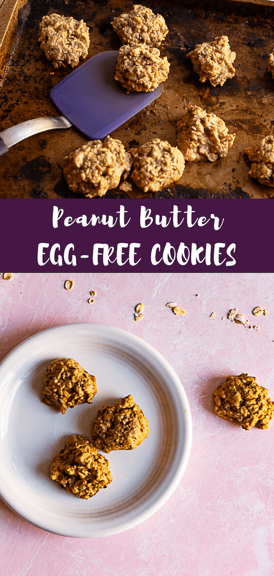 Short on pantry staples & looking for egg free cookies, vegan cookies or dairy free cookies? You'll love this egg free dessert. #eggfree #cookies #vegandessert #vegetarian #quarantinecooking #dairyfree #recipe #dessert