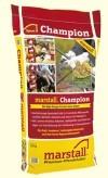 marstall Champion Alsterkraft
