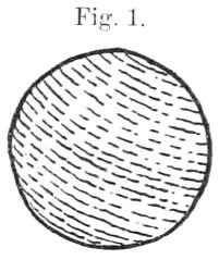 Querschnitt durch einen einfachen Stabbogen.