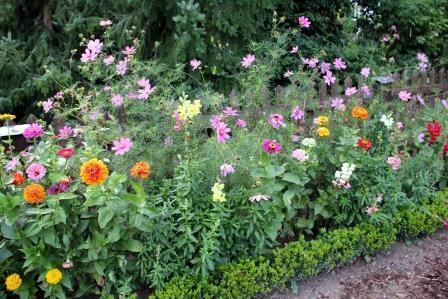 Spätsommerliches Blumenbeet