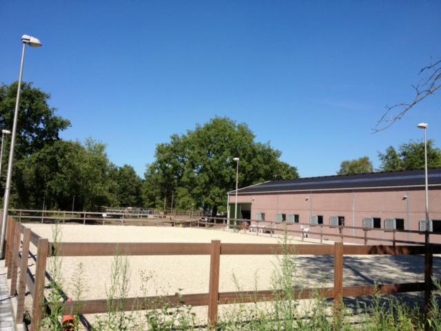 Buitenbak van Manege Gooi en Eemland, aangrenzend aan het Goois Natuurreservaat in Bussum