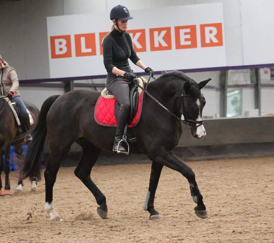 Ellen Barneveld-Stokkink