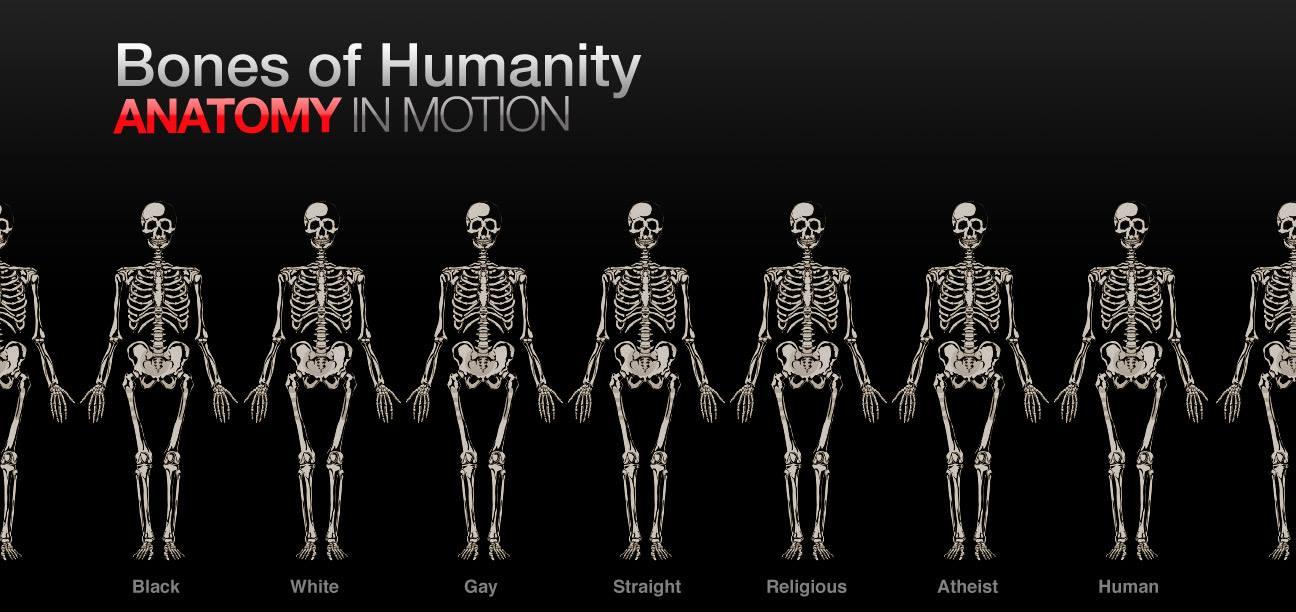 Anatomie Grundlagen