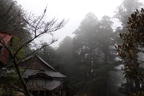 神秘的な霧に包まれた玉置神社さんの境内