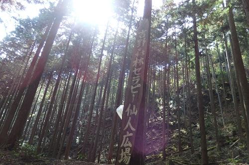 吉野森林セラピー 仙人広場