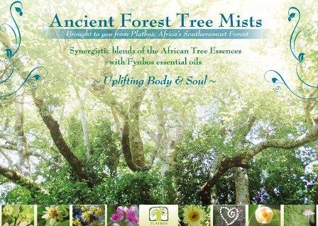 アフリカンツリーエッセンス太古の森のミスト