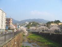芦屋駅を降りて六麓荘を見上げた風景。