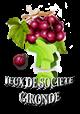 Jeux de société Gironde