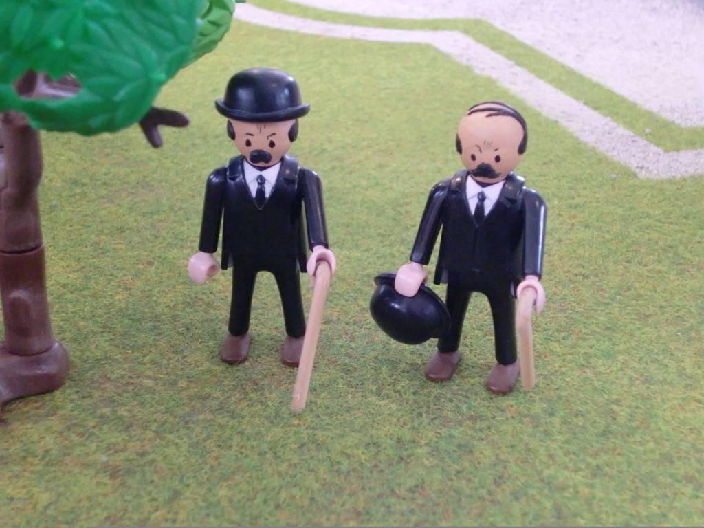 MM. Dupont et Dupond (Tintin)