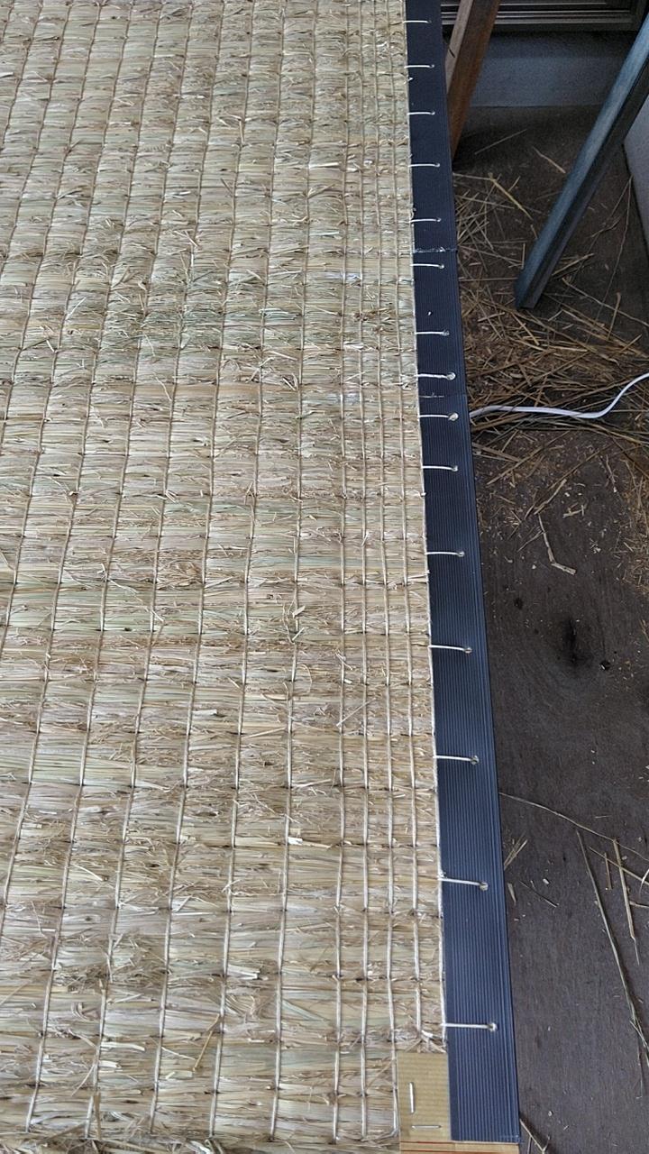 本床(藁床)を使用して、新畳作業をしました。