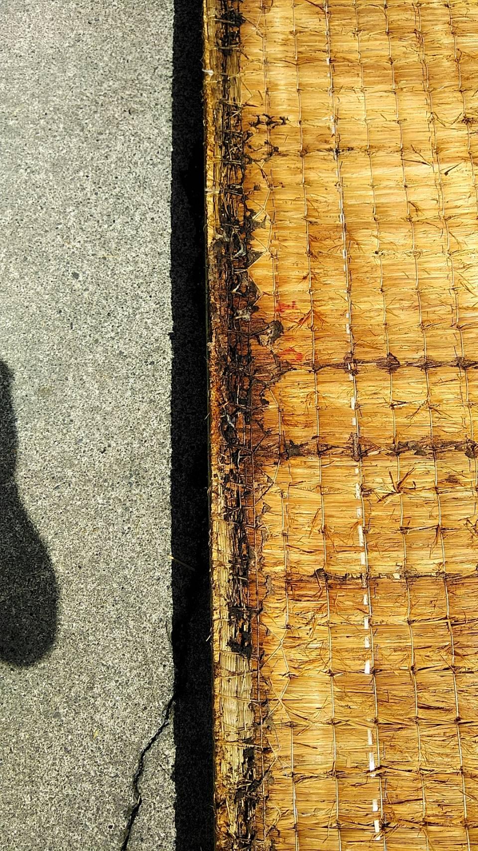 本床(藁床)へのシロアリ被害です。(シロアリ殺虫剤をかけた後です。)