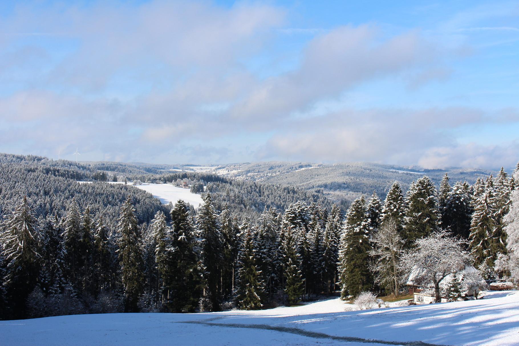 Winterausblick vom Balkon der Ferienwohnung