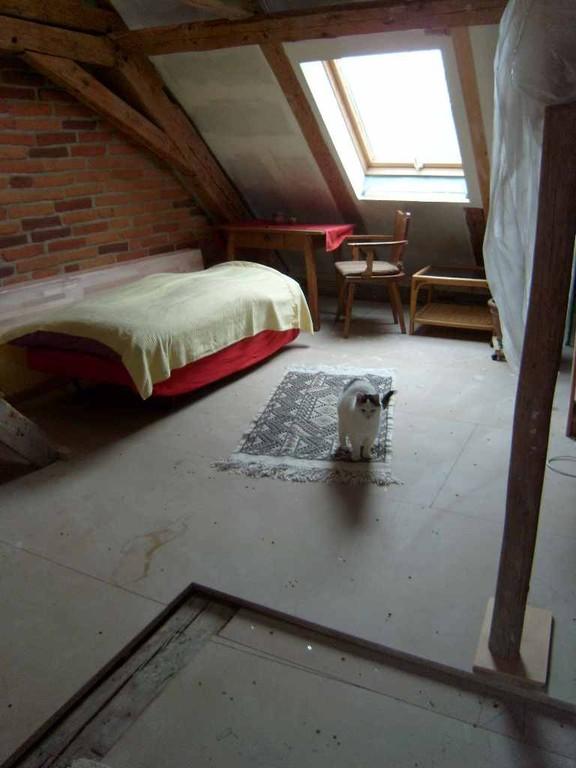 provisorisches Gästebett