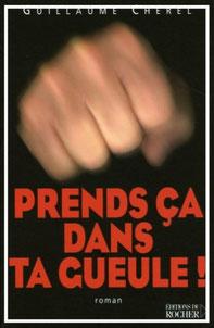 couverture Broché éditions du Rocher roman Prends ça dans ta gueule par guillaume cherel détective amours action révolution