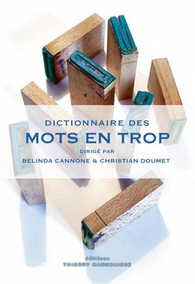 Couverture Dictionnaire des mots en trop