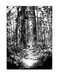 Dessin forêt femme