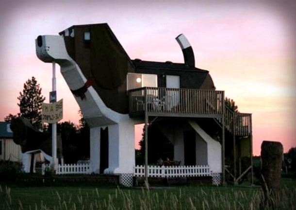Необычный дом на Airbnb в форме собаки
