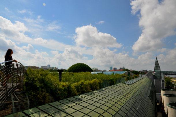 Обзорная площадка - сад на крыше Варшавской Университетской Библиотеки