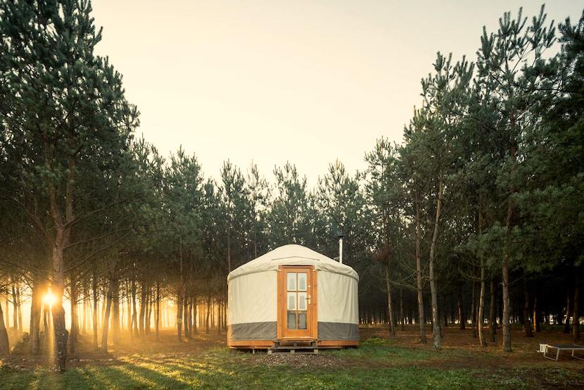 Glamping in Poland near Gdansk