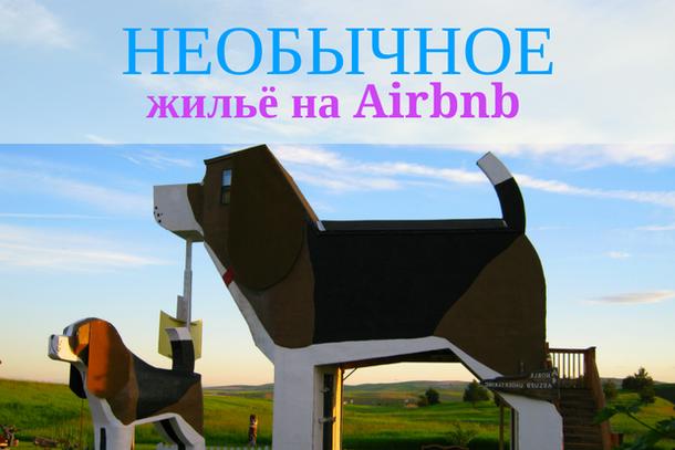 Необычное жилье на Airbnb