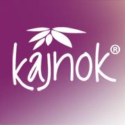 Kajnok vorgestellt auf Startup Willi