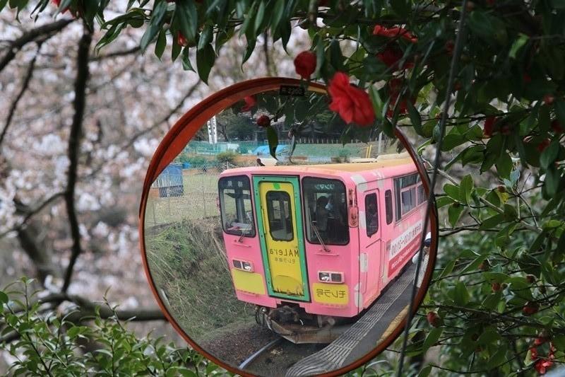 ピンクの電車