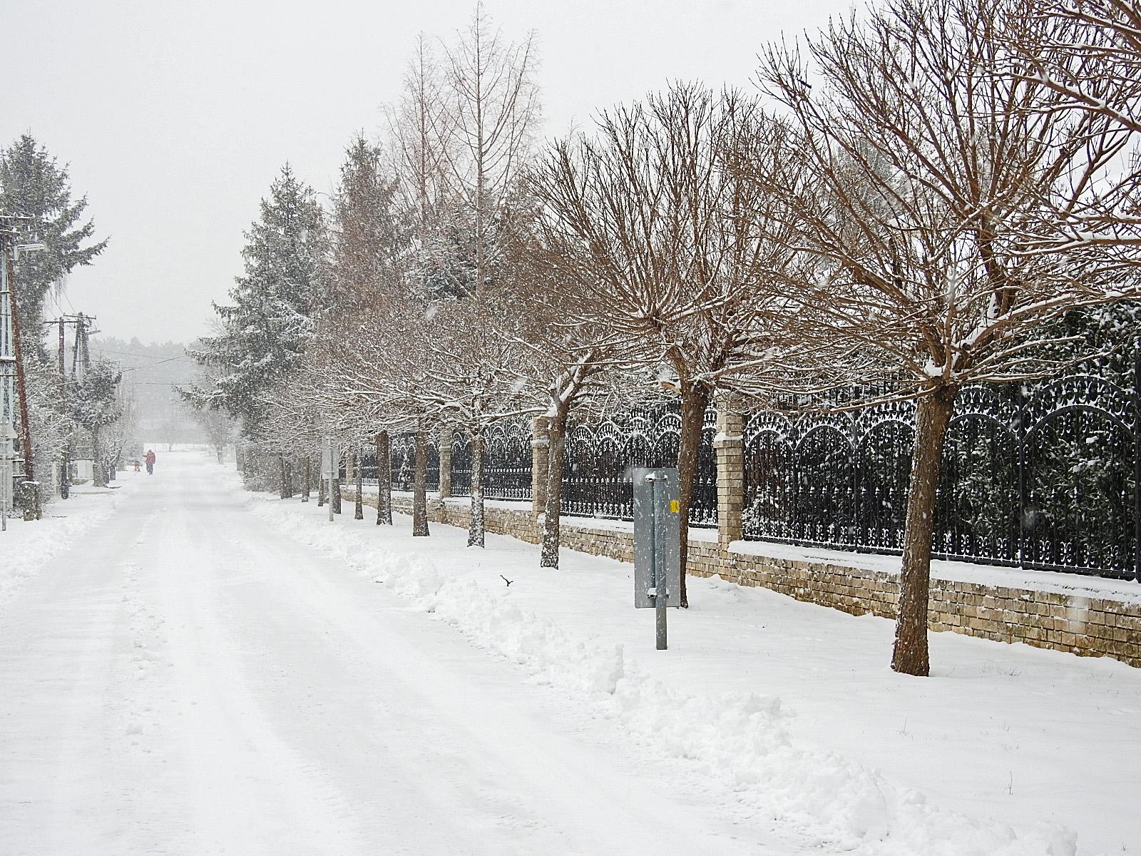 Hokuli utca (ofwel straat)