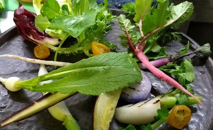 自家農園野菜達