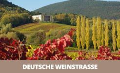 Hier erfahren Sie mehr über die Deutsche Weinstraße auf FERIENSTRASSEN.INFO