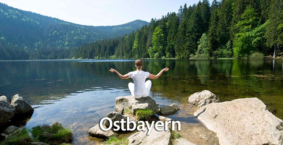 Den Schwarzwald auf der Badischen Weinstraße erfahren!