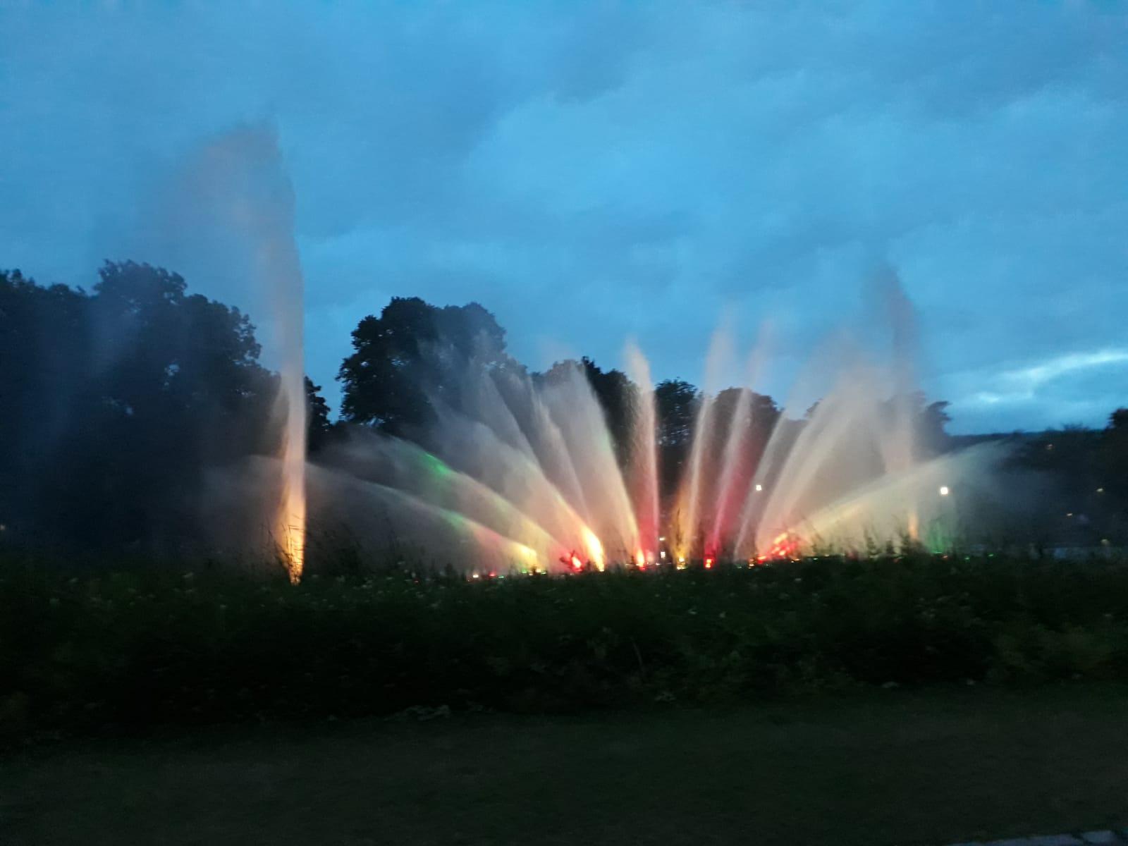 """Wasserlicht-Konzert in """"Planten un Blomen"""""""