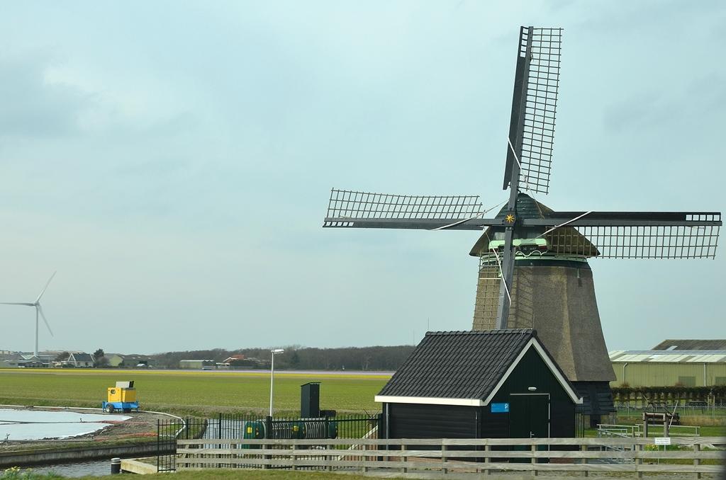 Windmühlen haben wir tatsächlich...