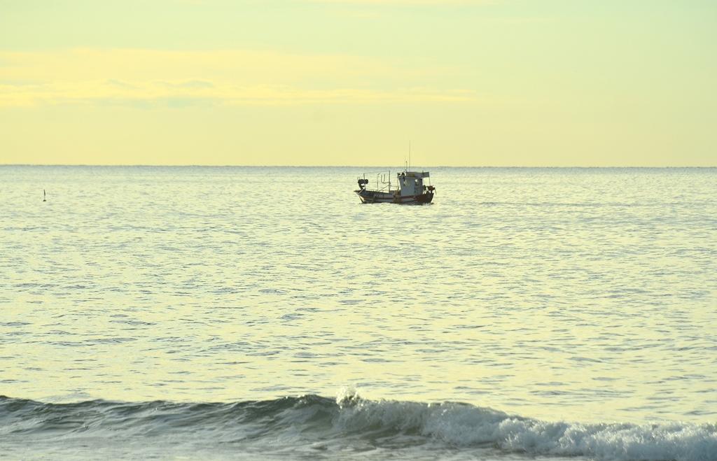 Den Fischern bei Arbeiten zusehen