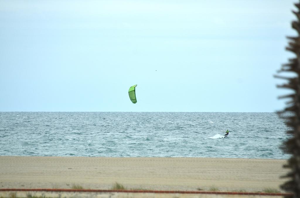 Die scheinen den Wind zu lieben
