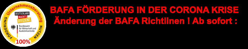 BAFA Förderung Unternehmensberatung 100 Prozent