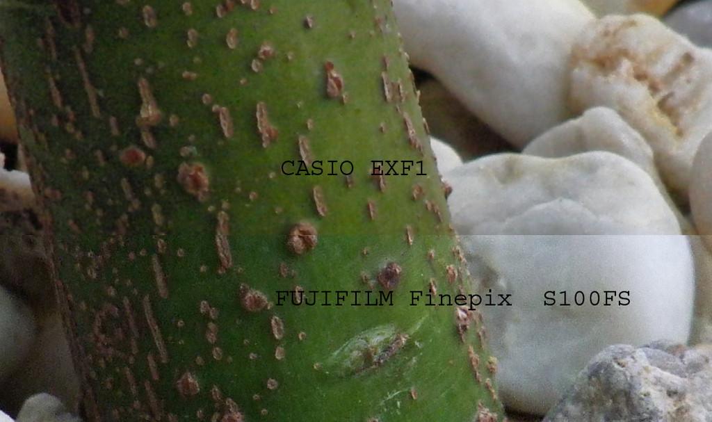 Max. Brennweite + max. Makro: CASIO EXF1(oben)    --|--    FUJI S100FS (unten)