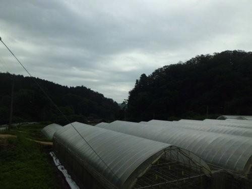 高温!の次は、台風からの曇天・・