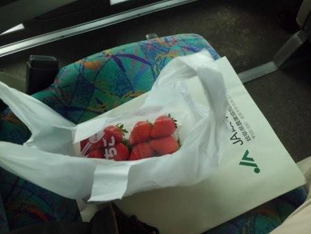お土産に、イチゴ、買いましたよ