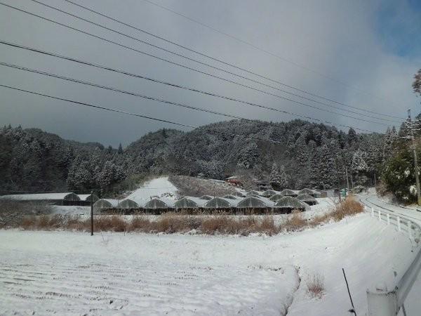 24年12月、シーズン初めての積雪