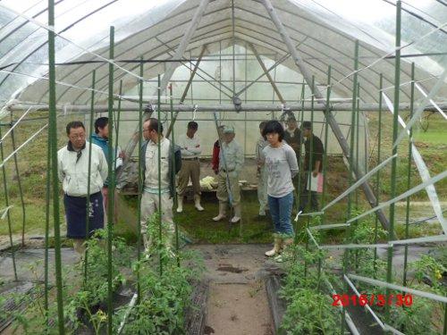 みんなで、見回ります これは、石川農園