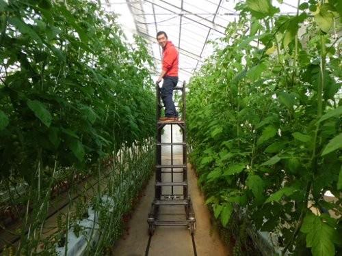 イシグロ農材試験農場・・モデルは三郎君